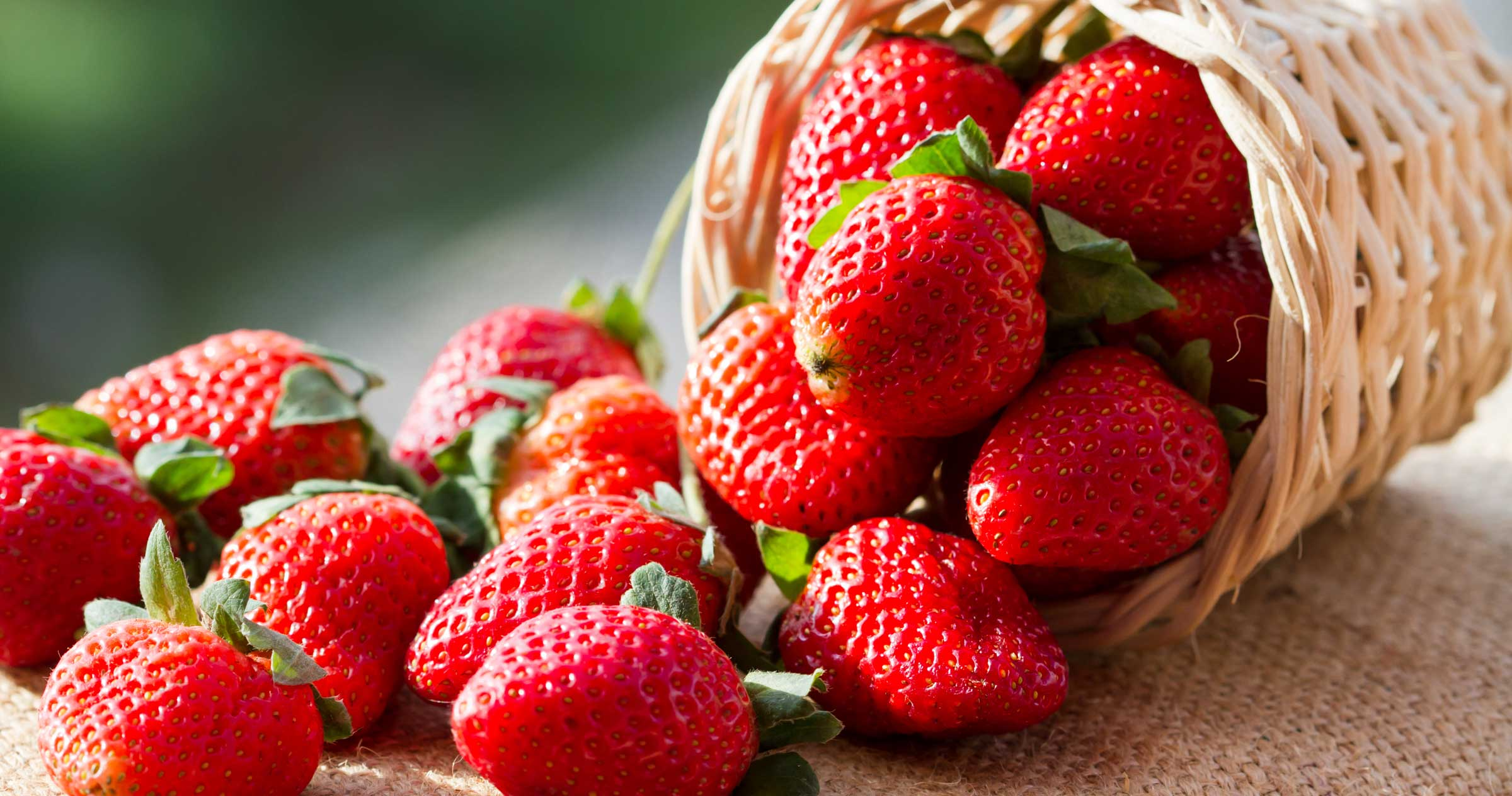 Strawberries (250g pack)